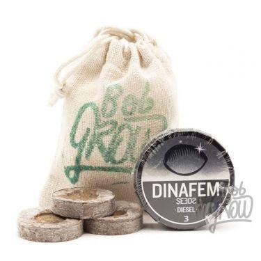 DIESEL Dinafem