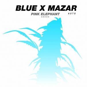 BLUE X MAZAR AUTO