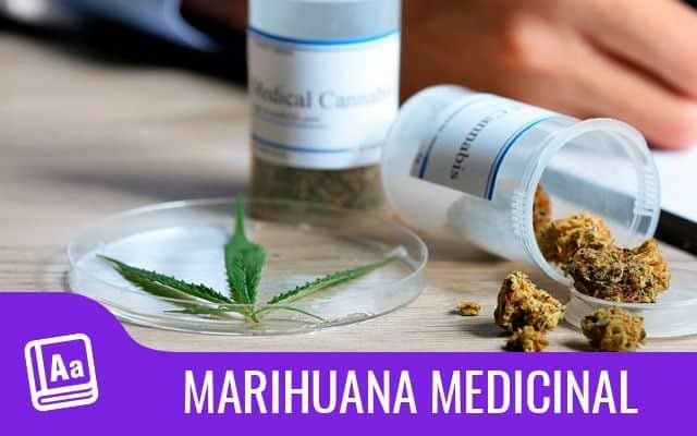 Marihuana medicinal 1