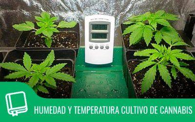 Humedad y temperatura en el cultivo de cannabis