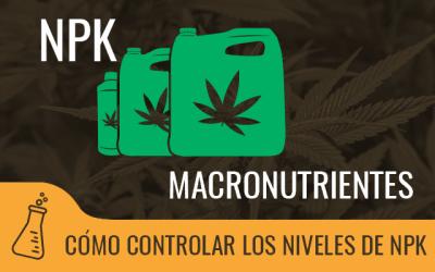 NPK, macronutrientes esenciales para el cultivo de cannabis